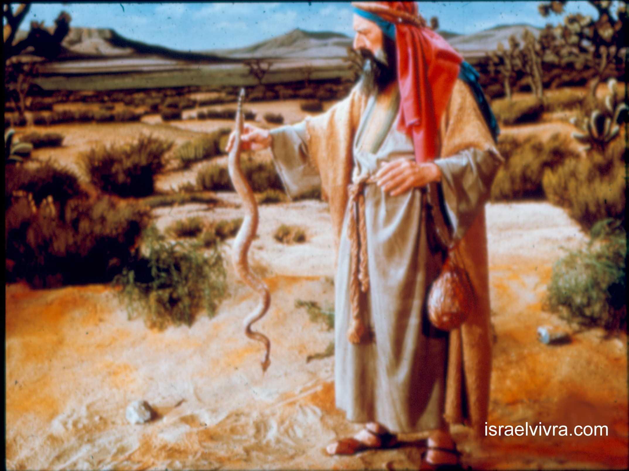 Rencontre dieu et moise